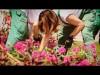 Közösségi virágültetés a Margitszigeten