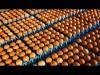 Zúzzák a holland tojásokat